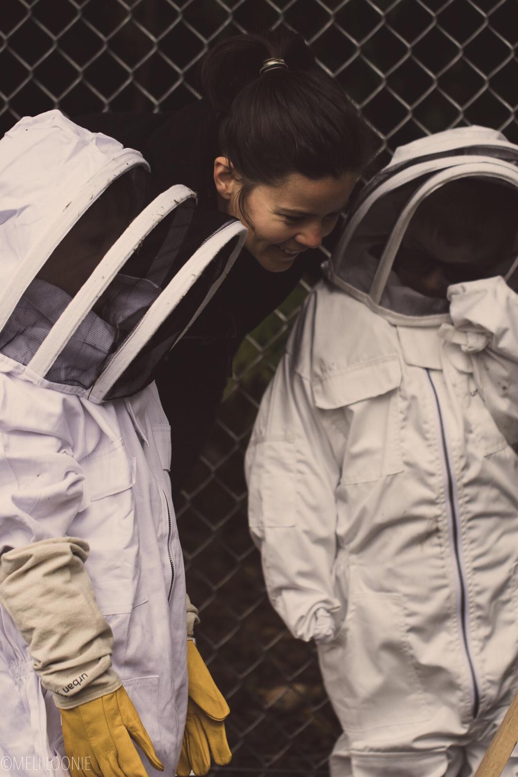 presentation abeilles